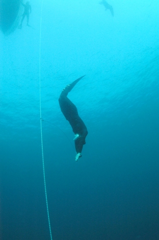 freediving1